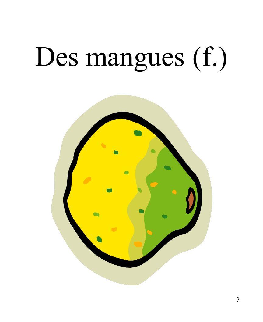 3 Des mangues (f.)