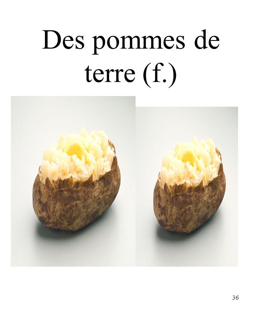 36 Des pommes de terre (f.)