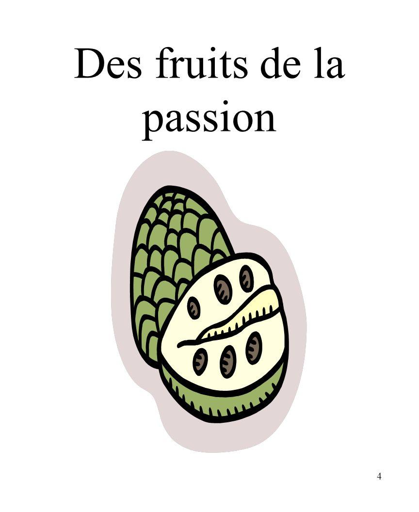 4 Des fruits de la passion
