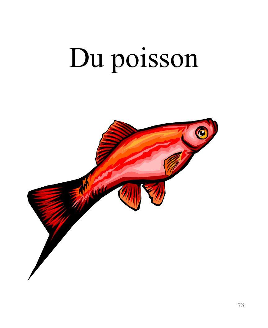 73 Du poisson
