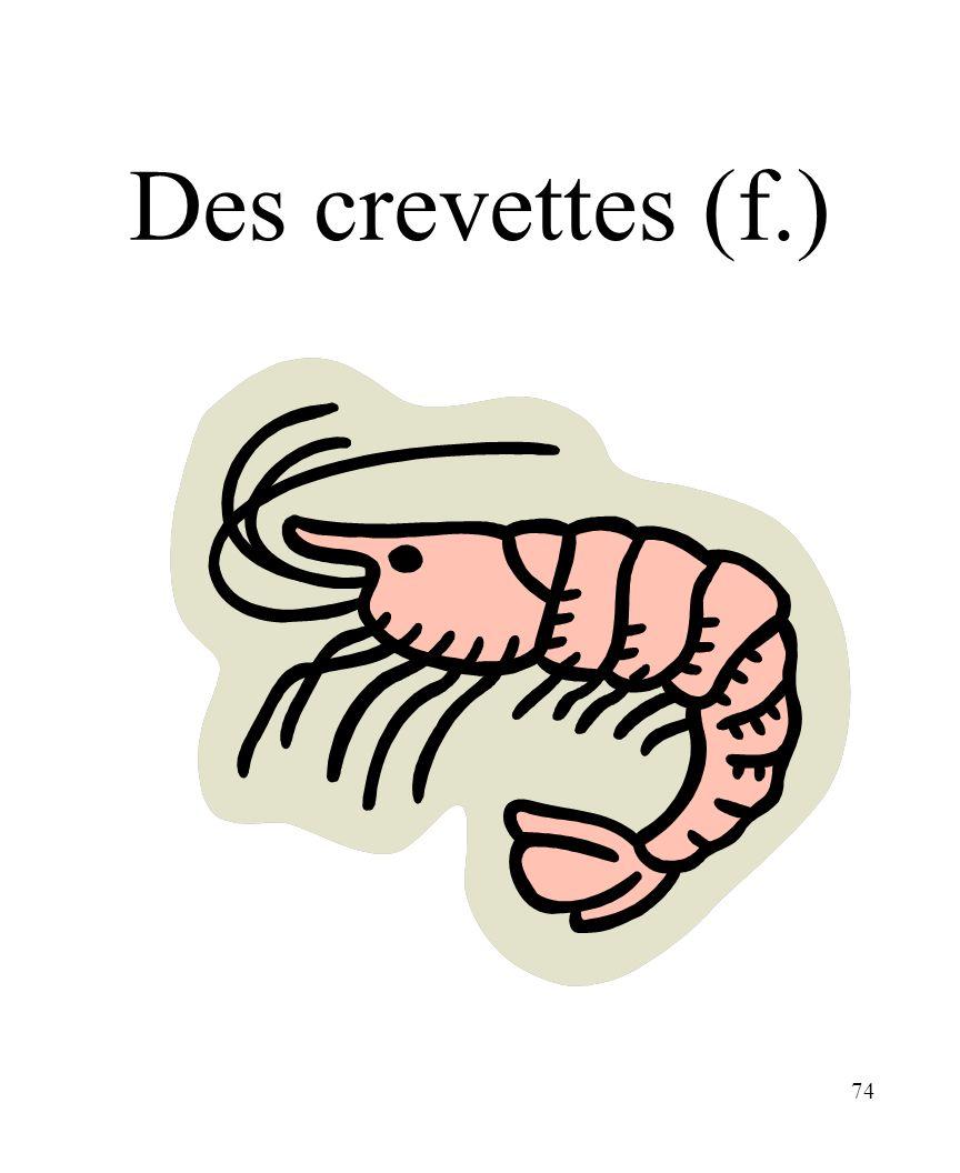 74 Des crevettes (f.)