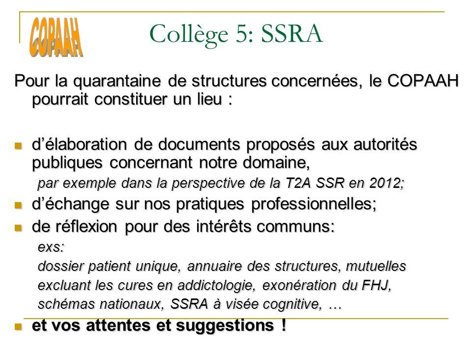 Collège 5: SSRA Pour la quarantaine de structures concernées, le COPAAH pourrait constituer un lieu : délaboration de documents proposés aux autorités
