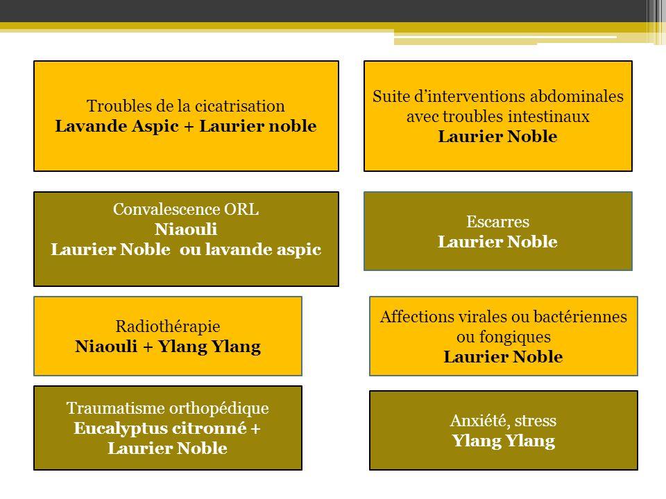 Troubles de la cicatrisation Lavande Aspic + Laurier noble Convalescence ORL Niaouli Laurier Noble ou lavande aspic Anxiété, stress Ylang Suite dinter