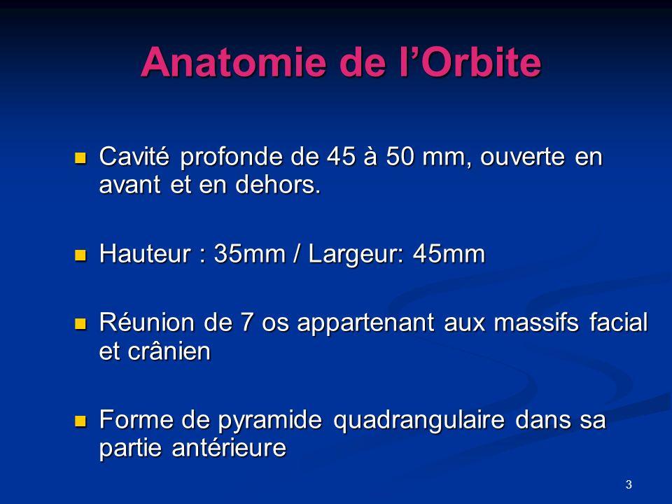 3 Anatomie de lOrbite Anatomie de lOrbite Cavité profonde de 45 à 50 mm, ouverte en avant et en dehors. Cavité profonde de 45 à 50 mm, ouverte en avan
