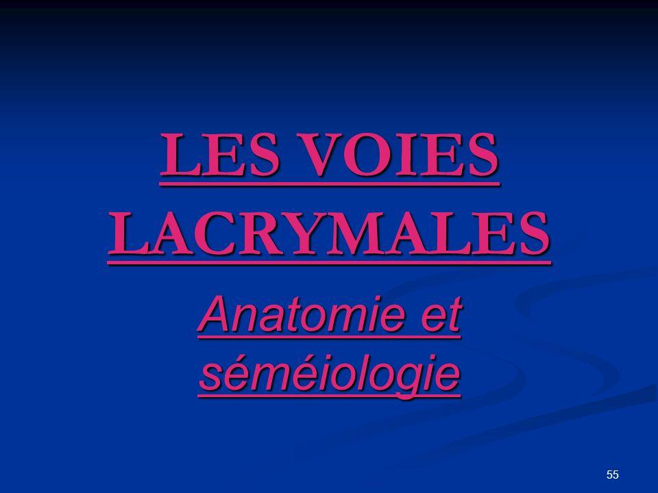 55 LES VOIES LACRYMALES Anatomie et séméiologie