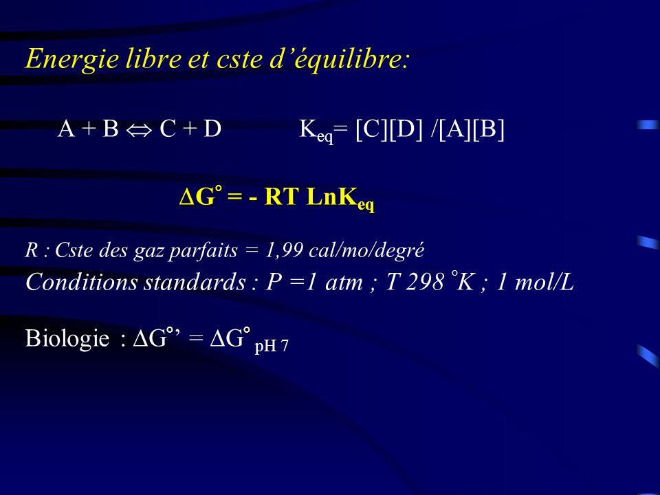 Liaison riche en énergie : Par hydrolyse, libèrent qtité d (> 6 kcal/mole) càd : liaisons avec un potentiel énergétique élevé.