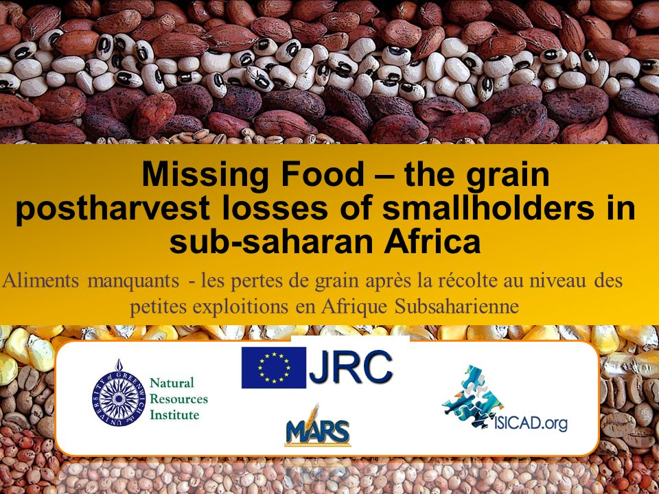 Missing Food – the grain postharvest losses of smallholders in sub-saharan Africa JRC Aliments manquants - les pertes de grain après la récolte au niv