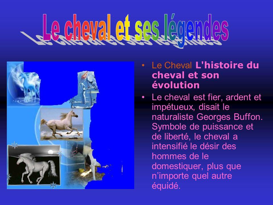 Le Cheval L histoire du cheval et son évolution Le cheval est fier, ardent et impétueux, disait le naturaliste Georges Buffon.