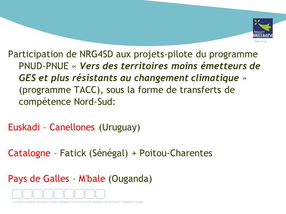 Pôle - Direction - Service Participation de NRG4SD aux projets-pilote du programme PNUD-PNUE « Vers des territoires moins émetteurs de GES et plus rés