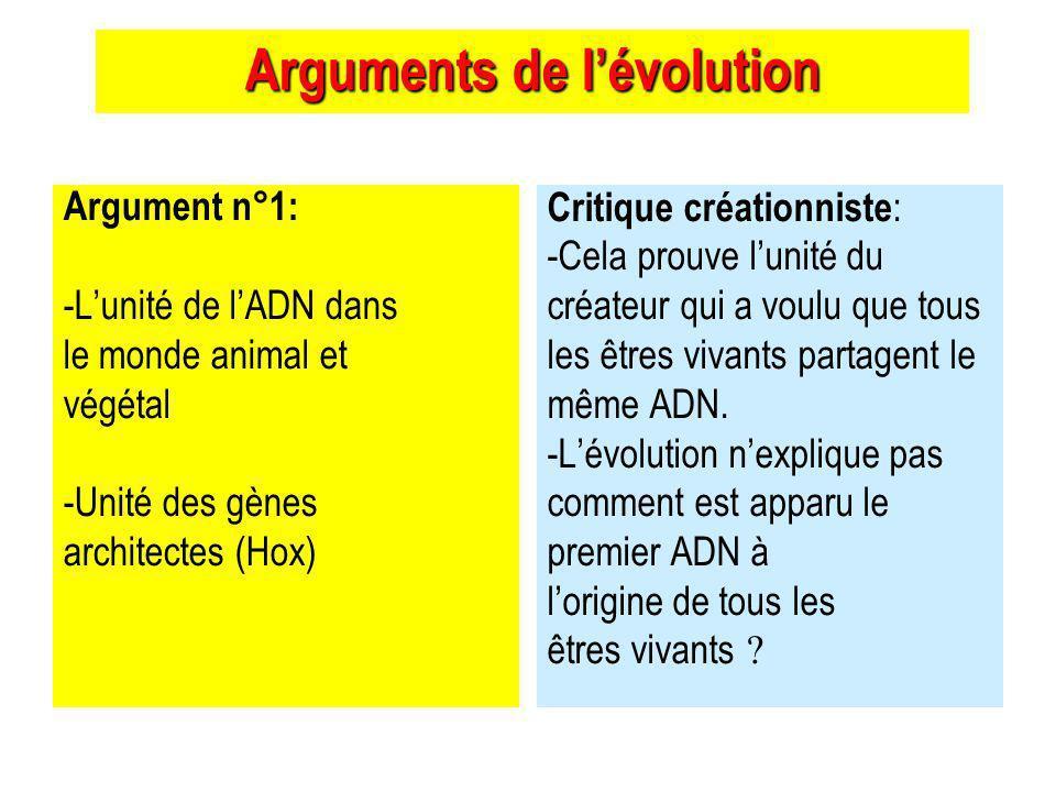 Arguments de lévolution Argument n°1: -Lunité de lADN dans le monde animal et végétal -Unité des gènes architectes (Hox) Critique créationniste : -Cela prouve lunité du créateur qui a voulu que tous les êtres vivants partagent le même ADN.