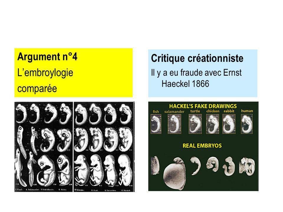 Argument n°4 Lembroylogie comparée Critique créationniste Il y a eu fraude avec Ernst Haeckel 1866