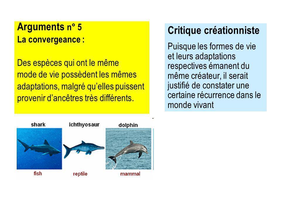 Arguments n° 5 La convergeance : Des espèces qui ont le même mode de vie possèdent les mêmes adaptations, malgré quelles puissent provenir dancêtres très différents.