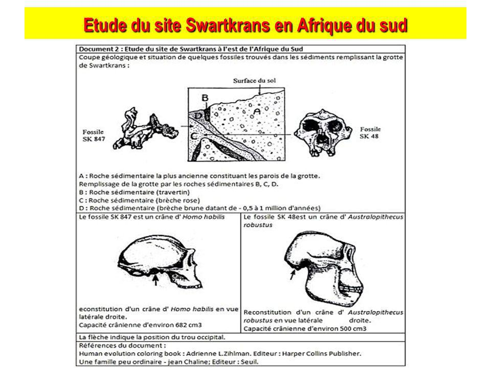 Etude du site Swartkrans en Afrique du sud