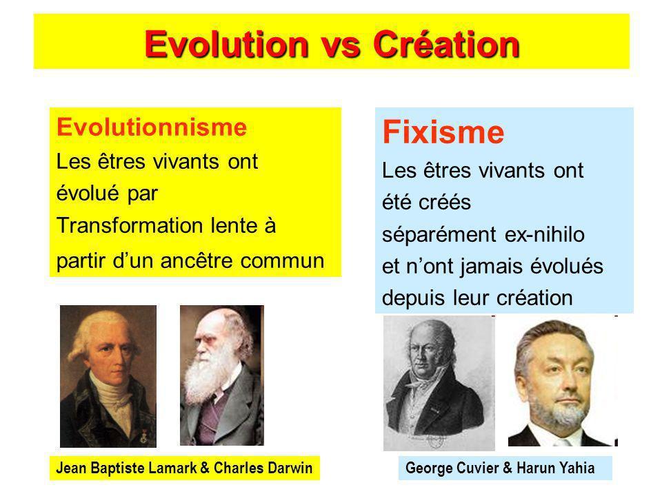 Evolution vs Création Fixisme Les êtres vivants ont été créés séparément ex-nihilo et nont jamais évolués depuis leur création Evolutionnisme Les être