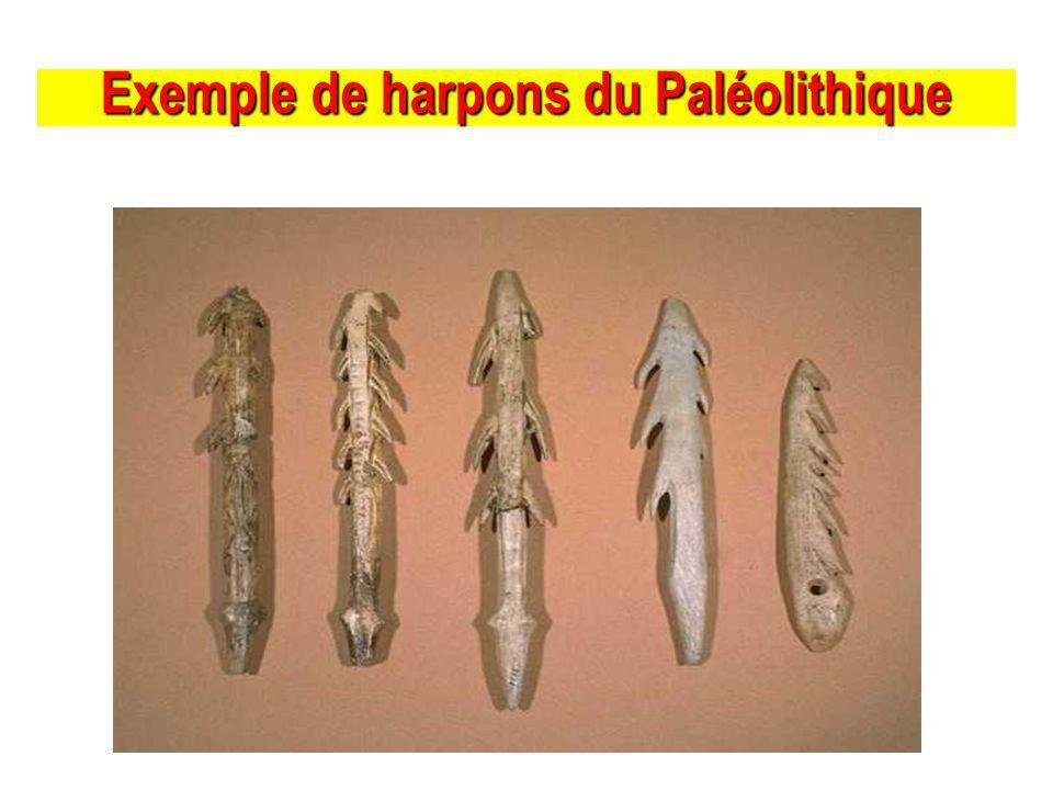 Exemple de harpons du Paléolithique