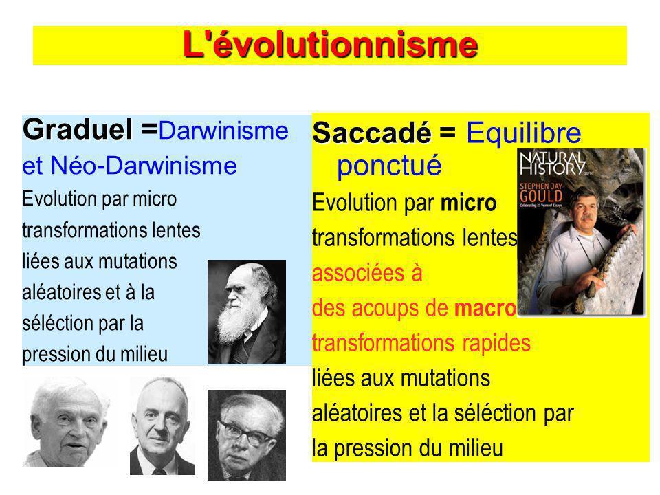 L évolutionnisme Graduel Graduel = Darwinisme et Néo-Darwinisme Evolution par micro transformations lentes liées aux mutations aléatoires et à la séléction par la pression du milieu Saccadé Saccadé = Equilibre ponctué Evolution par micro transformations lentes associées à des acoups de macro transformations rapides liées aux mutations aléatoires et la séléction par la pression du milieu
