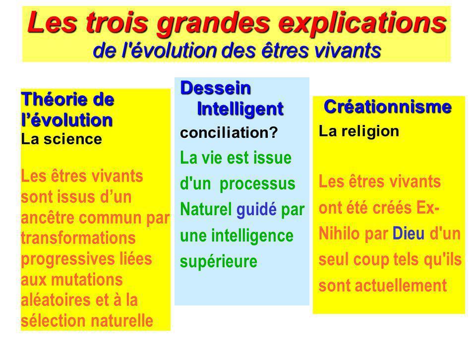 Les trois grandes explications de l'évolution des êtres vivants Théorie de lévolution La science Les êtres vivants sont issus dun ancêtre commun par t
