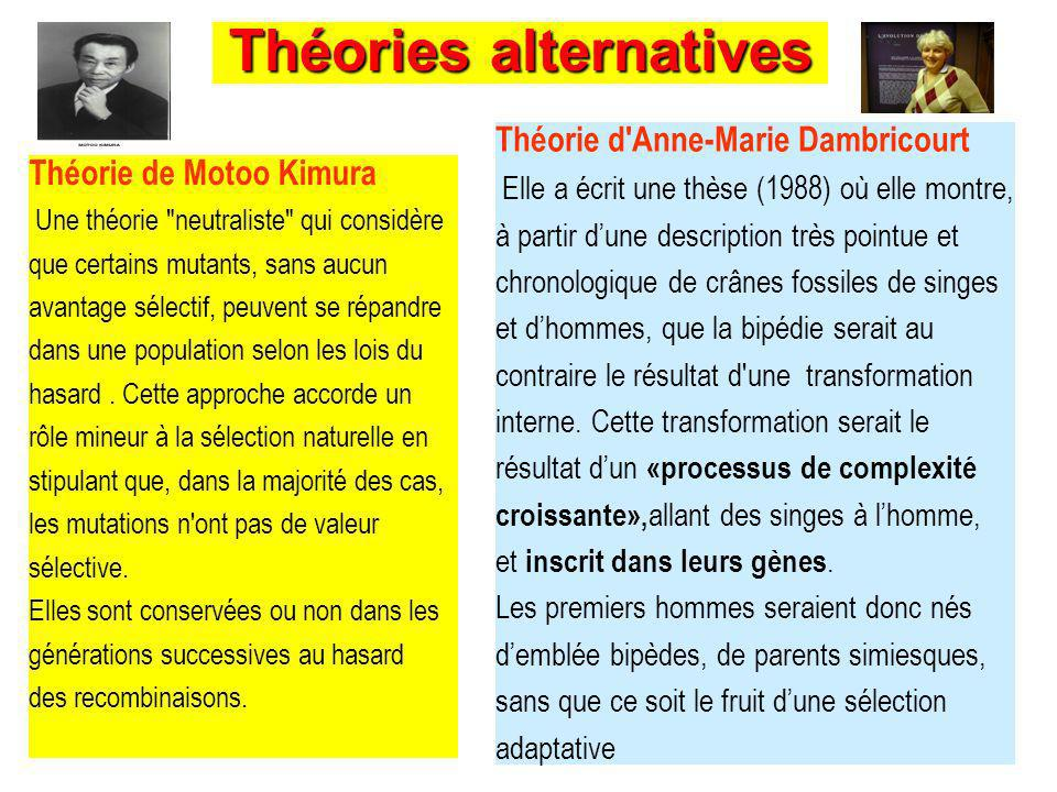 Théories alternatives Théorie de Motoo Kimura Une théorie