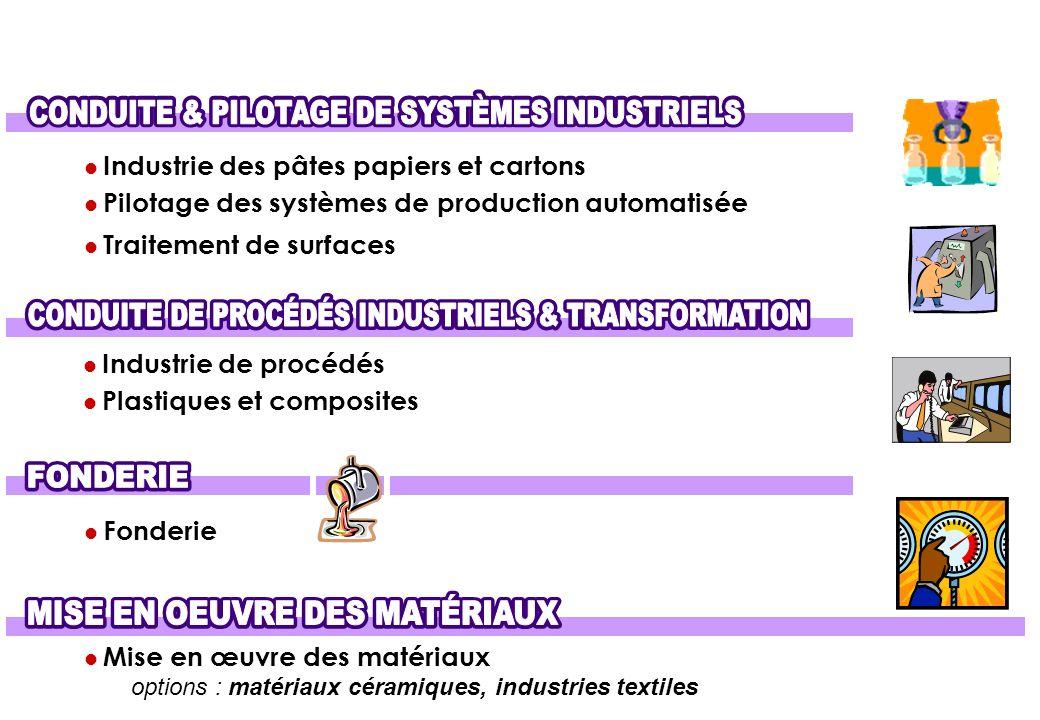 Industrie des pâtes papiers et cartons Pilotage des systèmes de production automatisée Traitement de surfaces Industrie de procédés Plastiques et comp