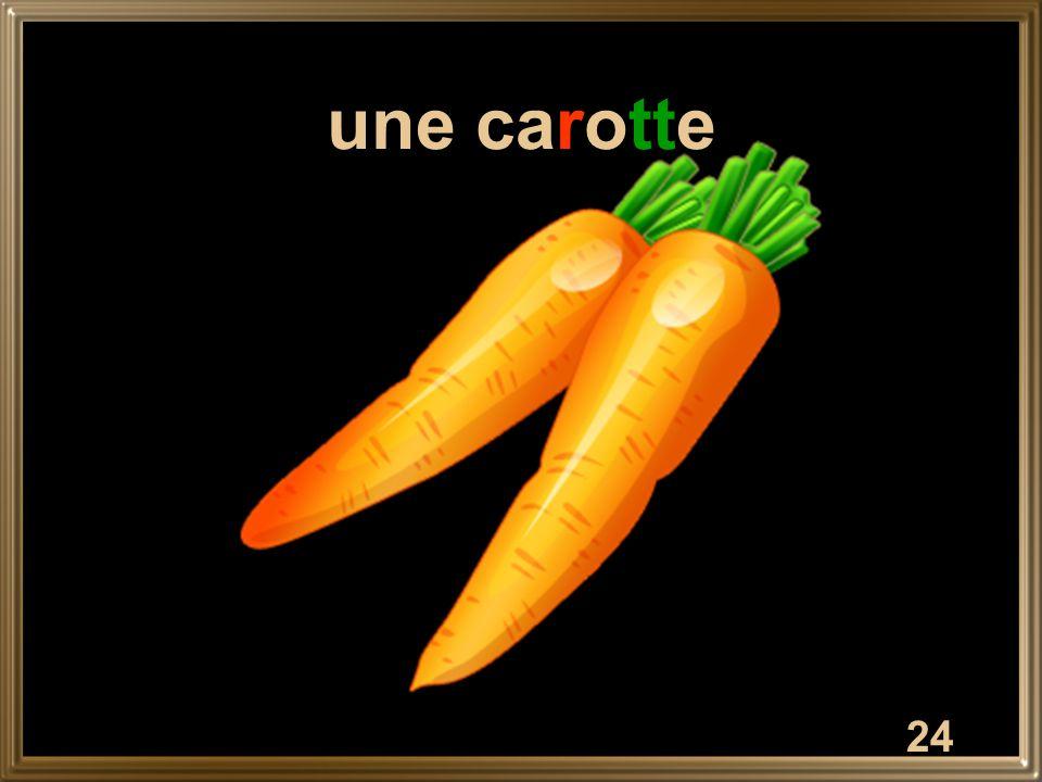 24 une carotte