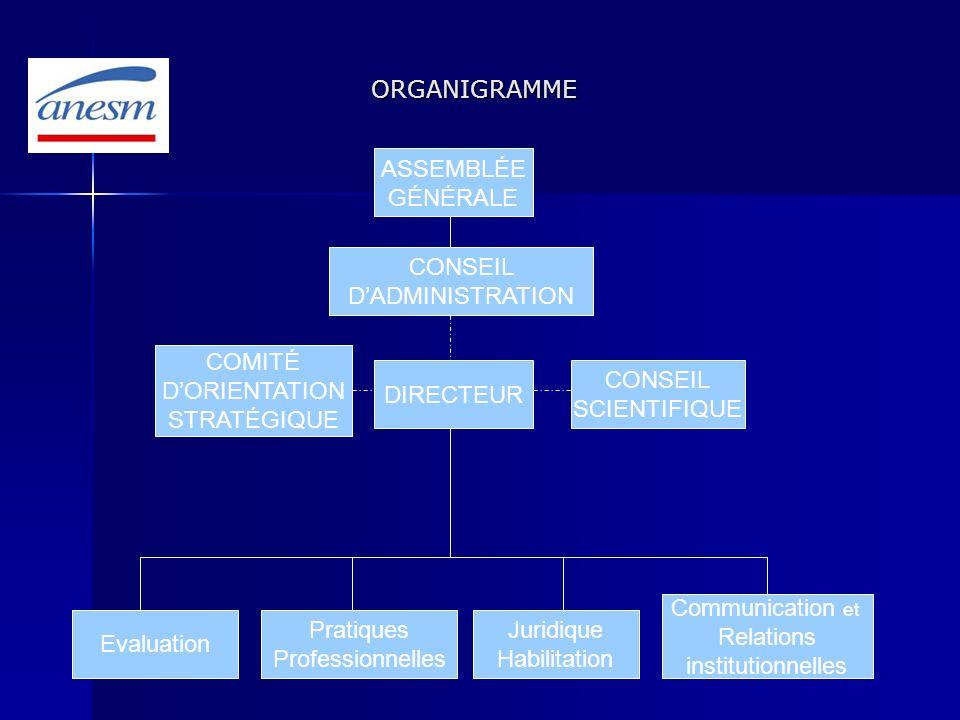 ORGANIGRAMME ORGANIGRAMME ASSEMBLÉE GÉNÉRALE CONSEIL DADMINISTRATION DIRECTEUR CONSEIL SCIENTIFIQUE COMITÉ DORIENTATION STRATÉGIQUE Juridique Habilita