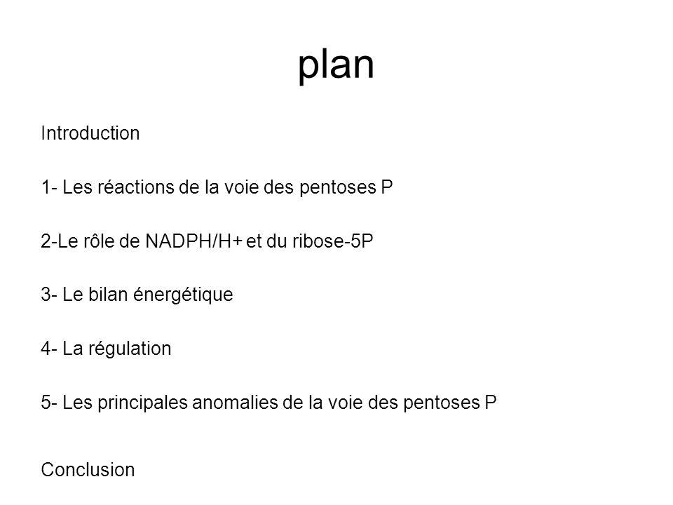 plan Introduction 1- Les réactions de la voie des pentoses P 2-Le rôle de NADPH/H+ et du ribose-5P 3- Le bilan énergétique 4- La régulation 5- Les pri