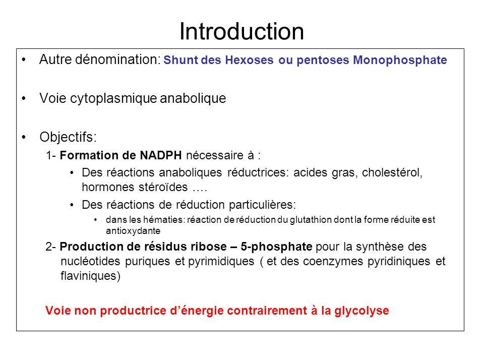 Introduction Autre dénomination: Shunt des Hexoses ou pentoses Monophosphate Voie cytoplasmique anabolique Objectifs: 1- Formation de NADPH nécessaire