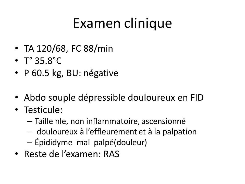 Examen clinique TA 120/68, FC 88/min T° 35.8°C P 60.5 kg, BU: négative Abdo souple dépressible douloureux en FID Testicule: – Taille nle, non inflammatoire, ascensionné – douloureux à leffleurement et à la palpation – Épididyme mal palpé(douleur) Reste de lexamen: RAS