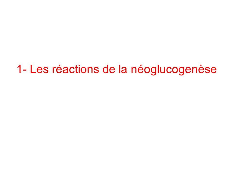 La néoglucogenèse n est pas l inverse de la glycolyse: –Utilise en sens inverse les réactions réversibles de la glycolyse –Ne peut utiliser les 3 réactions irréversibles : doit les contourner par des réactions spécifiques –Localisation des réactions de la néoglucogenèse: Mitochondrie, Cytoplasme, Réticulum endoplasmique