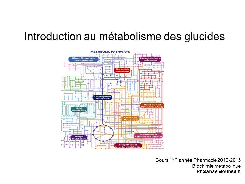 Introduction au métabolisme des glucides Cours 1 ière année Pharmacie 2012-2013 Biochimie métabolique Pr Sanae Bouhsain