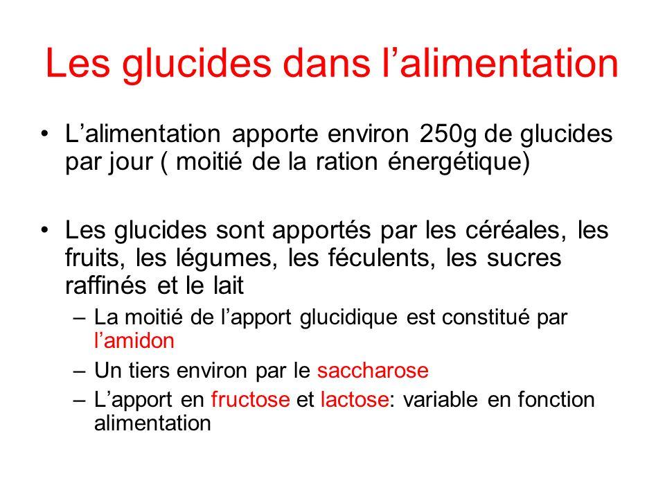 Les glucides dans lalimentation Lalimentation apporte environ 250g de glucides par jour ( moitié de la ration énergétique) Les glucides sont apportés