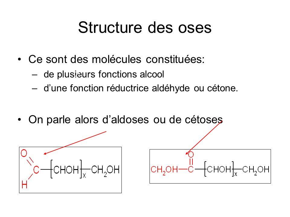 Structure des oses Ce sont des molécules constituées: – de plusieurs fonctions alcool – dune fonction réductrice aldéhyde ou cétone. On parle alors da