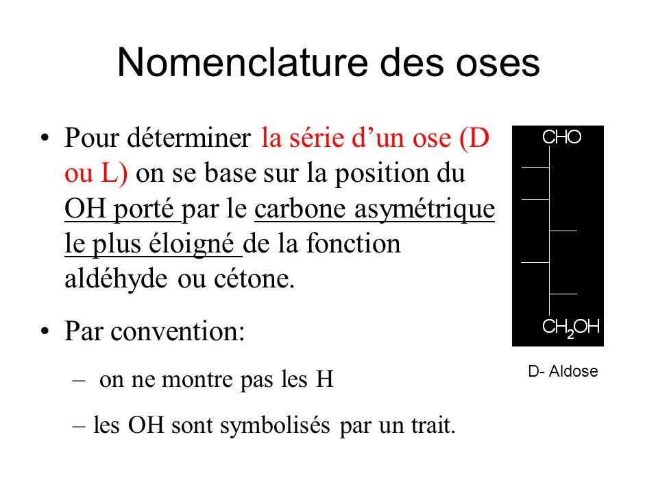 Nomenclature des oses Pour déterminer la série dun ose (D ou L) on se base sur la position du OH porté par le carbone asymétrique le plus éloigné de l
