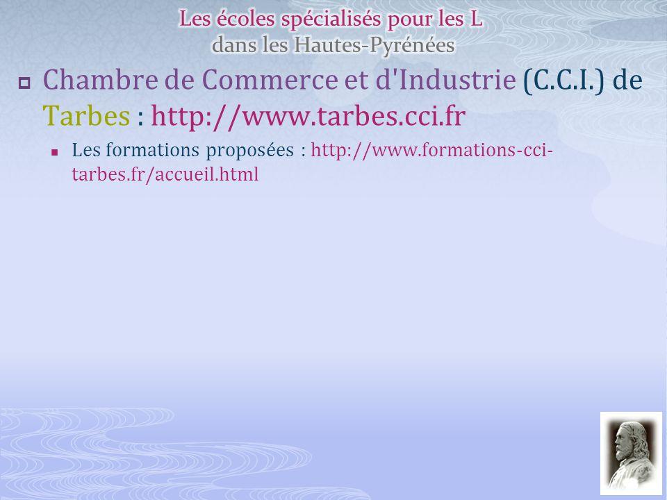 Chambre de Commerce et d'Industrie (C.C.I.) de Tarbes : http://www.tarbes.cci.fr Les formations proposées : http://www.formations-cci- tarbes.fr/accue