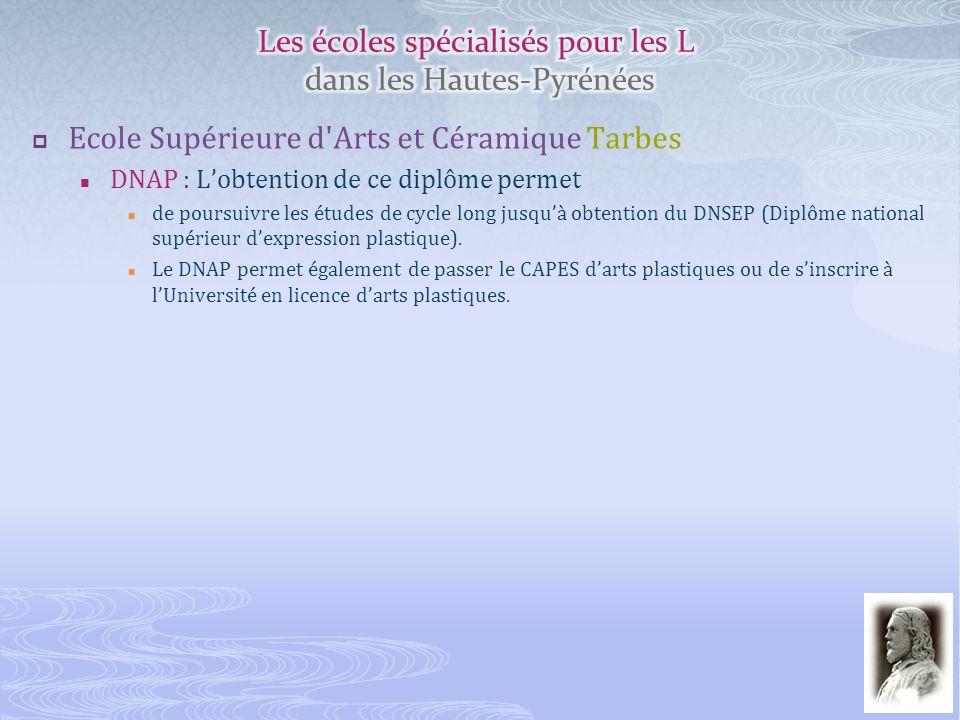 Ecole Supérieure d'Arts et Céramique Tarbes DNAP : Lobtention de ce diplôme permet de poursuivre les études de cycle long jusquà obtention du DNSEP (D