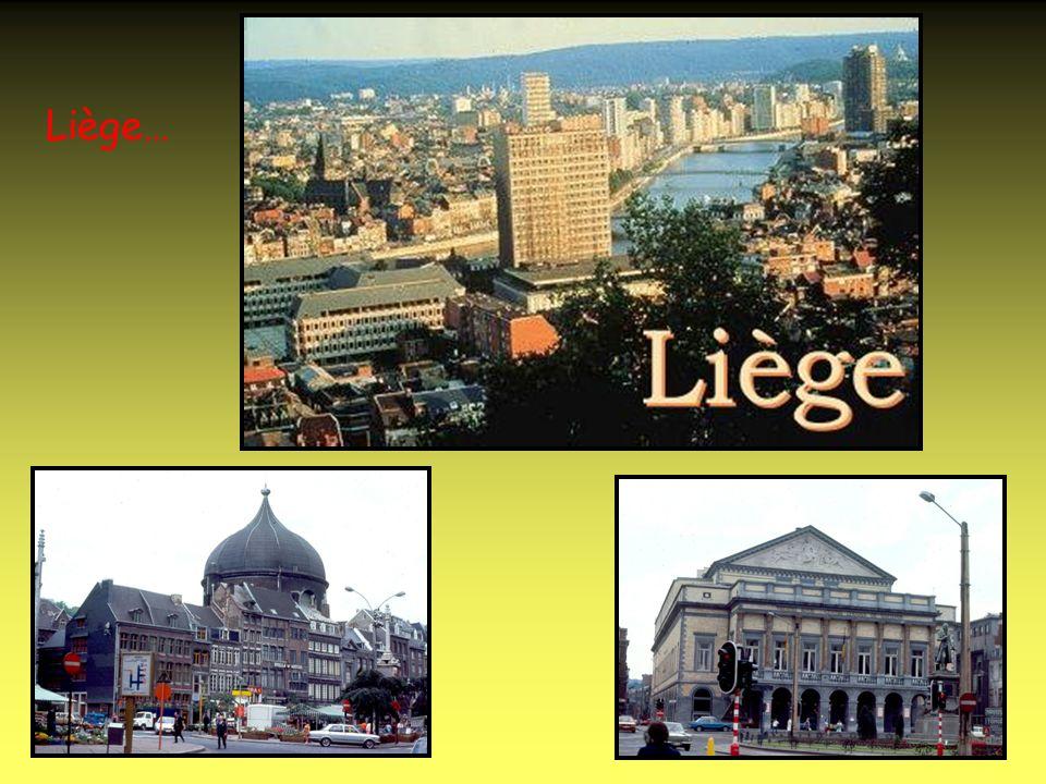 Namur est la capitale de la Wallonie.