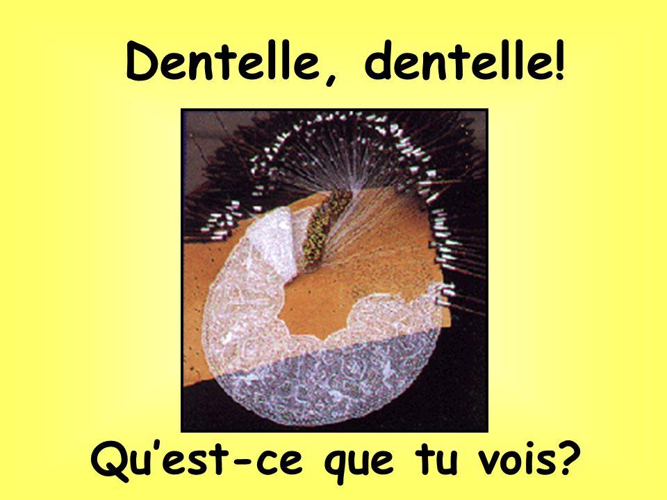Dentelles de Bruxelles, de Binche ou de Bruges…