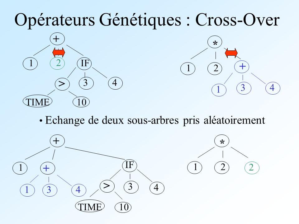 Opérateurs Génétiques : Cross-Over + IF > 1 2 34 TIME10 * + 12 1 34 * 12 1 + 34 + IF 1 > 3 2 TIME10 4 Echange de deux sous-arbres pris aléatoirement