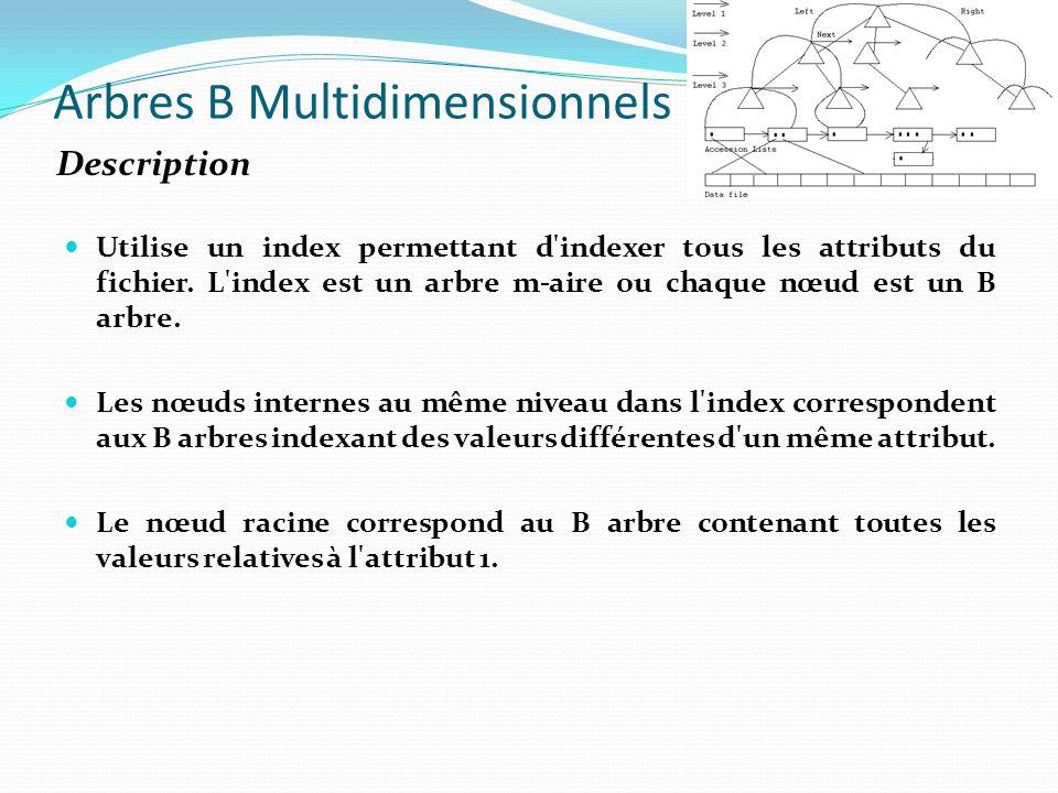 Arbres B Multidimensionnels Utilise un index permettant d'indexer tous les attributs du fichier. L'index est un arbre m-aire ou chaque nœud est un B a