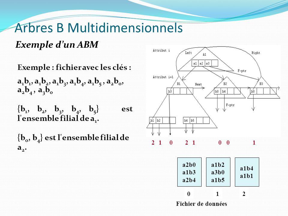 a2b0 a1b3 a2b4 a1b2 a3b0 a1b5 a1b4 a1b1 201 22101 001 Fichier de données Arbres B Multidimensionnels Exemple dun ABM Exemple : fichier avec les clés :