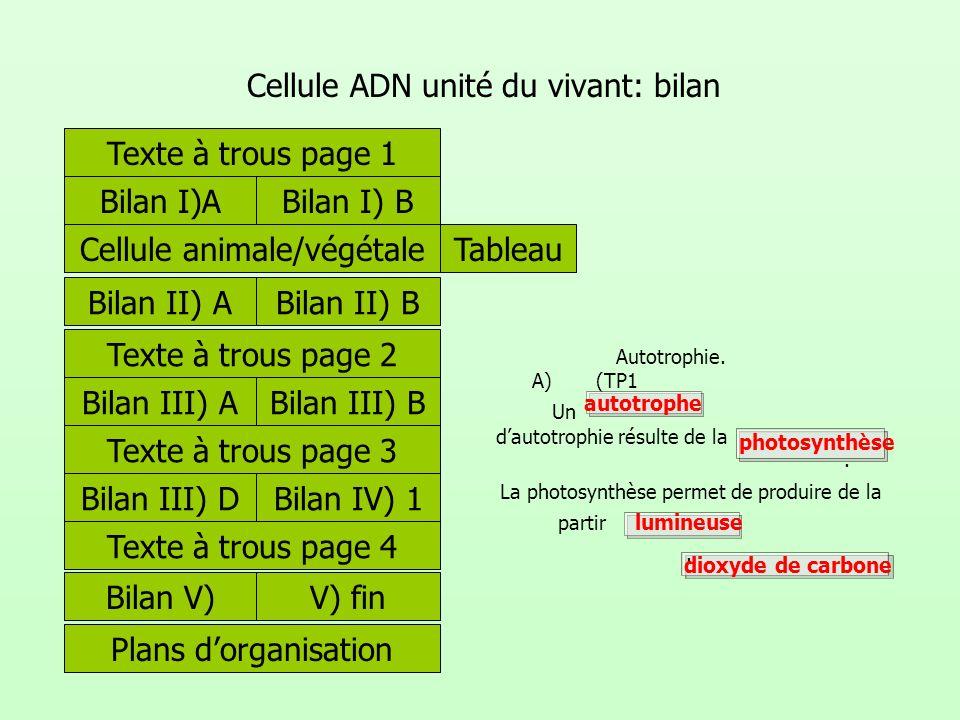 Cellule ADN unité du vivant: bilan Texte à trous page 1 Bilan I)ABilan I) B A) Autotrophie. (TP1 Un dautotrophie résulte de la. La photosynthèse perme