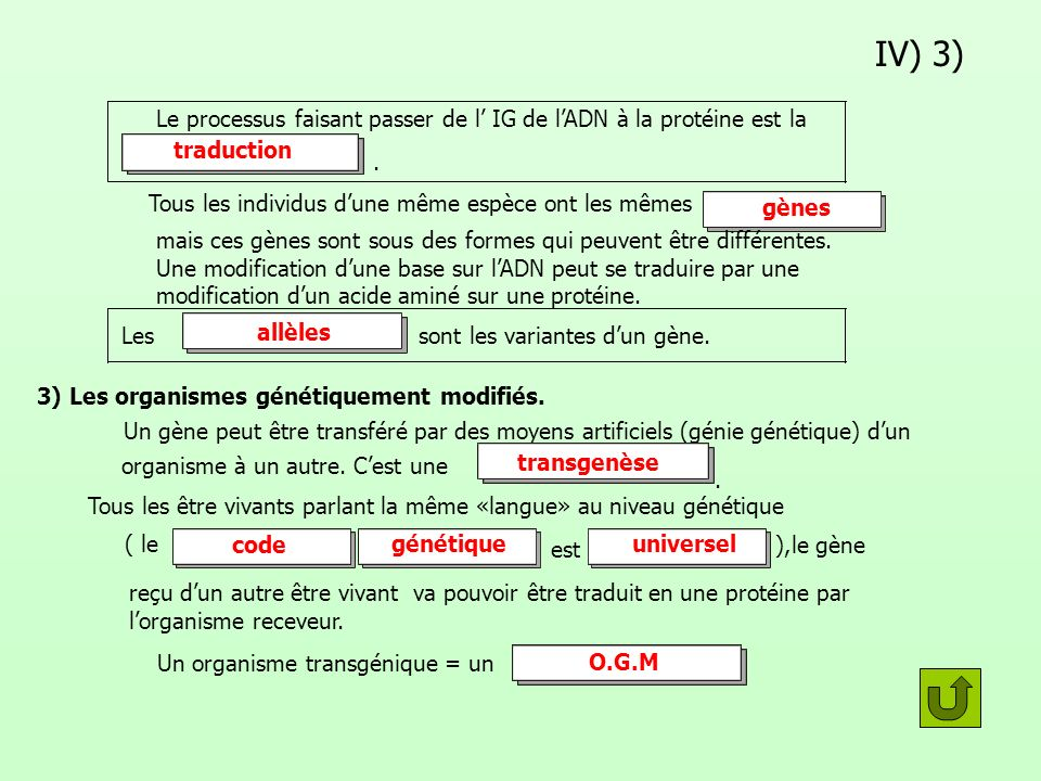 IV) 3) Le processus faisant passer de l IG de lADN à la protéine est la. Tous les individus dune même espèce ont les mêmes mais ces gènes sont sous de