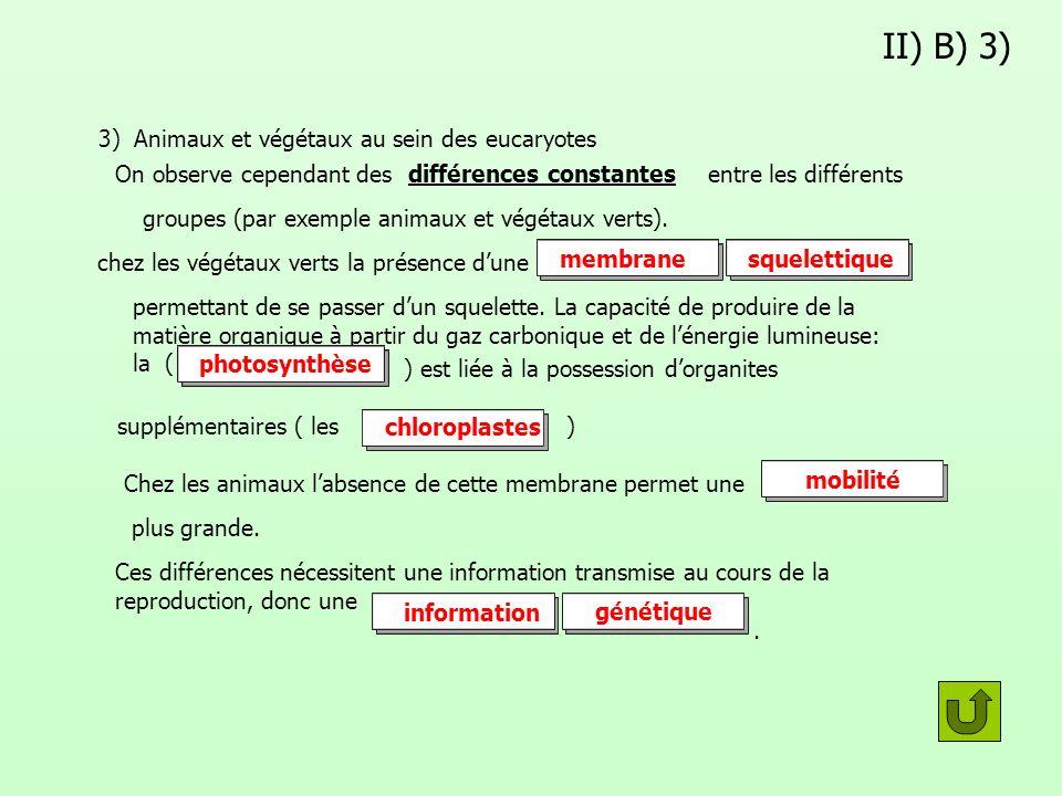II) B) 3) 3) Animaux et végétaux au sein des eucaryotes On observe cependant desdifférences constantes entre les différents groupes (par exemple anima