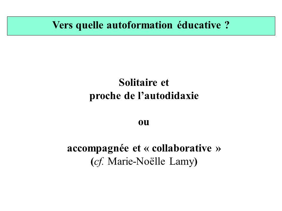 Vers quelle autoformation éducative ? Solitaire et proche de lautodidaxie ou accompagnée et « collaborative » (cf. Marie-Noëlle Lamy)