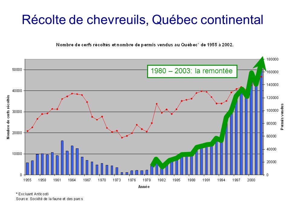 Récolte de chevreuils, Québec continental 1980 – 2003: la remontée