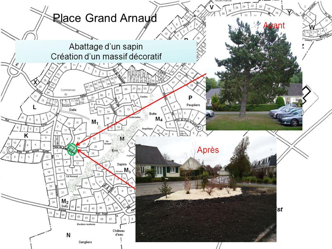 Abattage dun sapin Création dun massif décoratif Avant Après Place Grand Arnaud