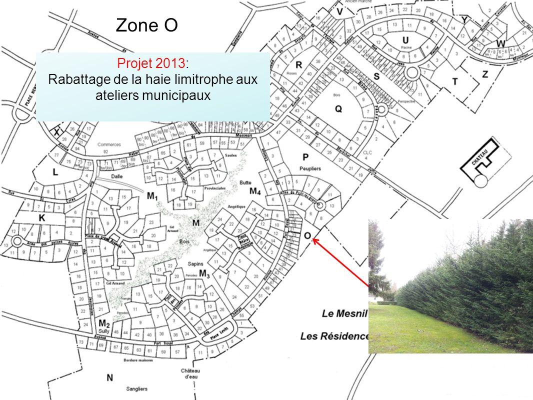 Projet 2013: Rabattage de la haie limitrophe aux ateliers municipaux Zone O