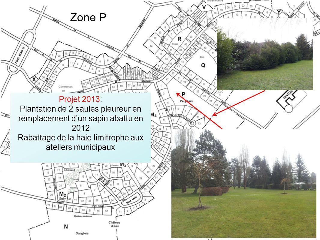 Projet 2013: Plantation de 2 saules pleureur en remplacement dun sapin abattu en 2012 Rabattage de la haie limitrophe aux ateliers municipaux Zone P