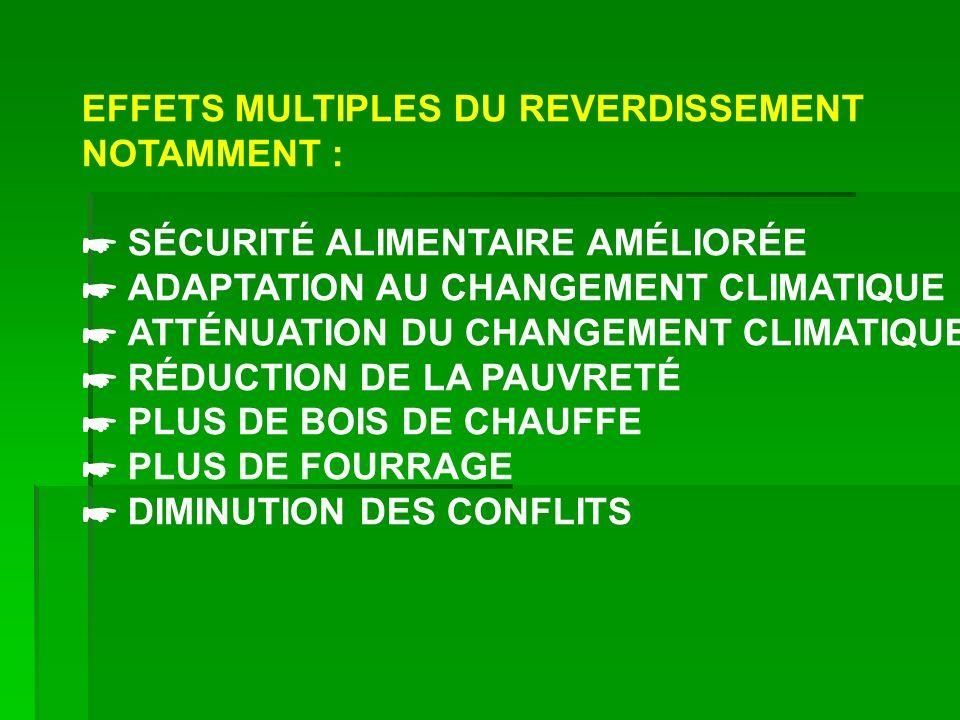 EFFETS MULTIPLES DU REVERDISSEMENT NOTAMMENT : SÉCURITÉ ALIMENTAIRE AMÉLIORÉE ADAPTATION AU CHANGEMENT CLIMATIQUE ATTÉNUATION DU CHANGEMENT CLIMATIQUE