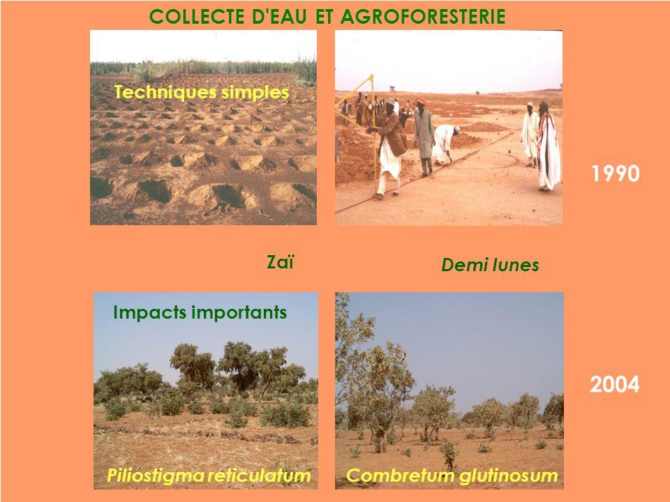 1990 COLLECTE D'EAU ET AGROFORESTERIE 2004 Demi lunes Combretum glutinosum Zaï Techniques simples Piliostigma reticulatum Impacts importants